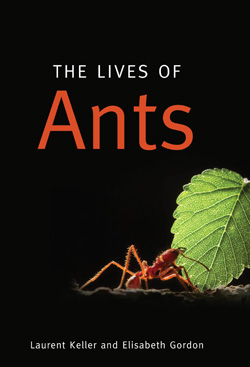 keller_the_lives_of-ants