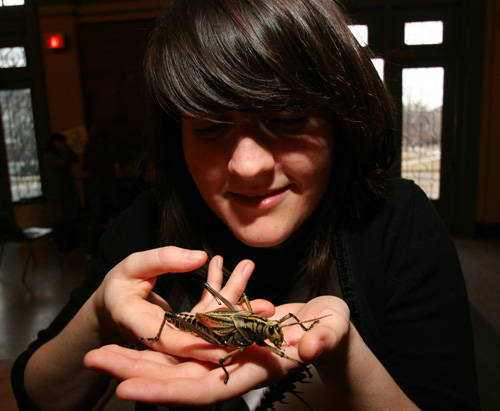 Michelle holds a lubber, Romalea microptera.